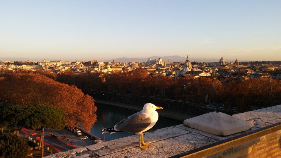 Rom von der Engelsburg