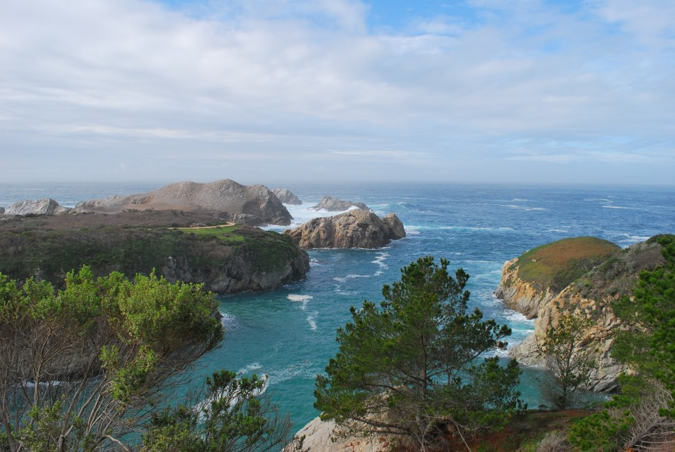 Point Lobos Reserve
