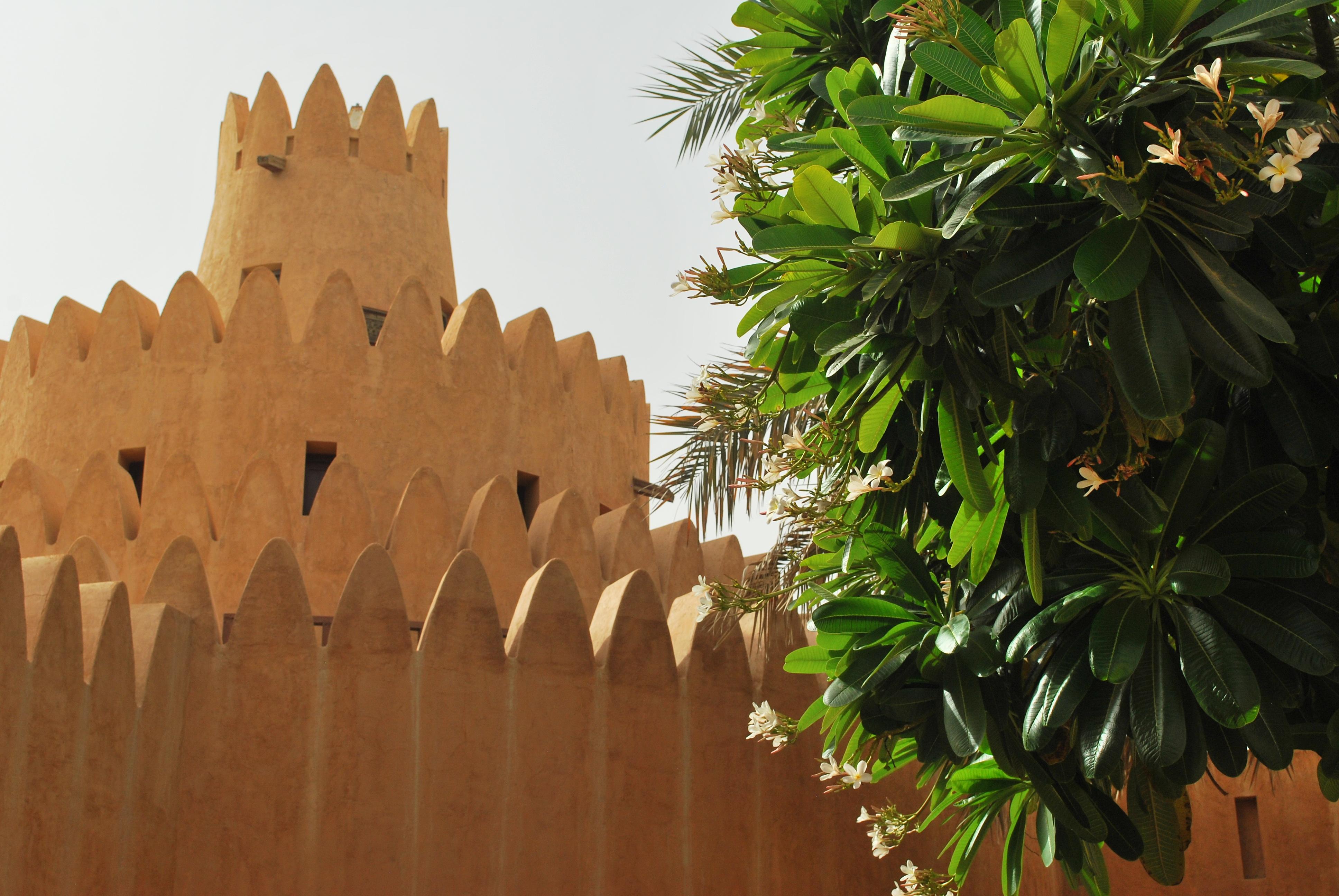 meer abu dhabi