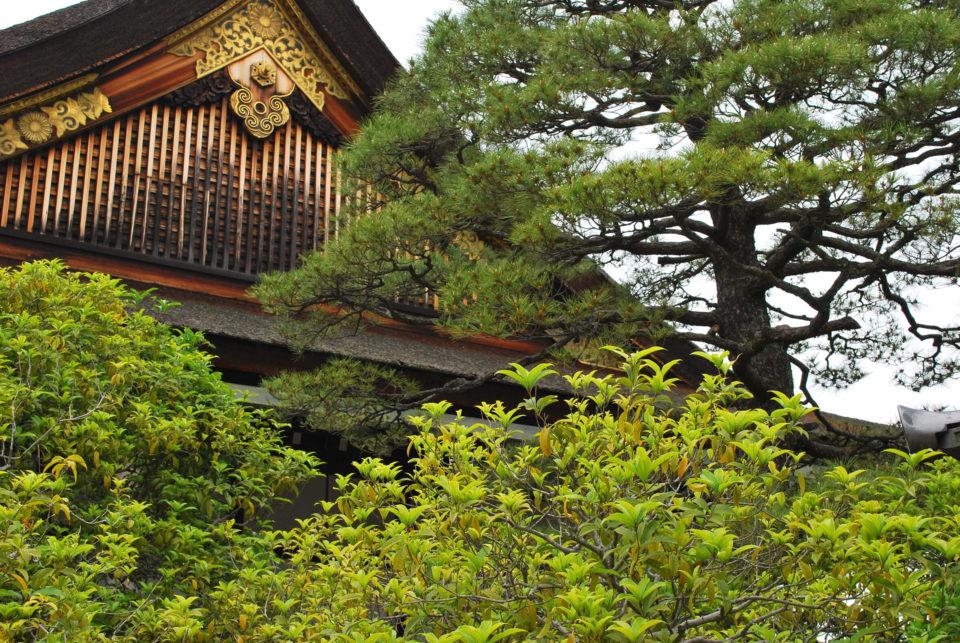 Kaiserpalast von Kyoto detail