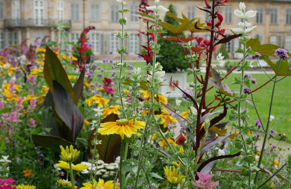 Schlossgarten Neues Schloss Bayreuth