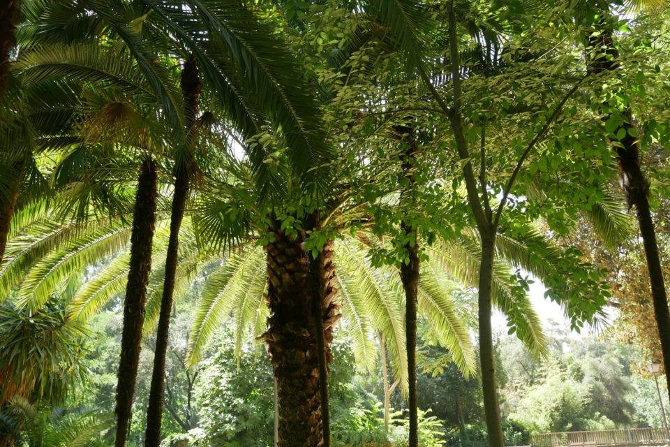 Sevilla Maria Luisa Park
