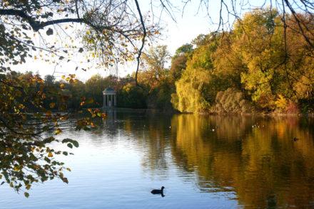 Nymphenburg Goldener Herbst